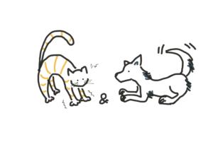 キャット&ドッグ