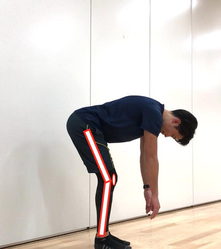 膝裏硬い 立位体前屈パターン