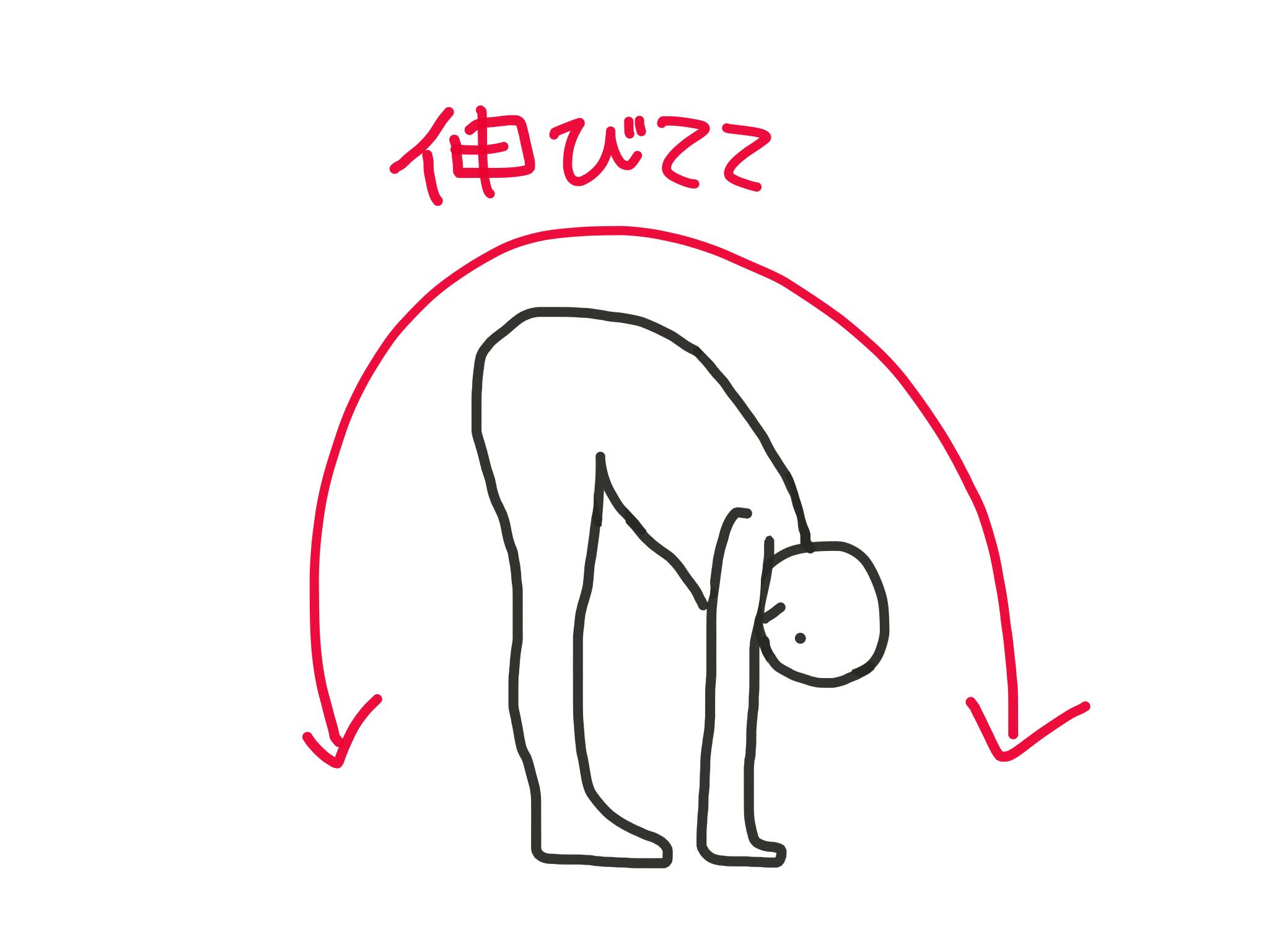 伸びてる 筋肉