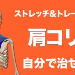 肩こりはトレーニングとストレッチで改善する!日頃からできる対処法をご紹介!