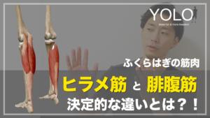 足首の柔軟性 ヒラメ筋 腓腹筋