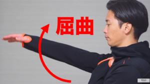 三角筋前部繊維 肩関節屈曲